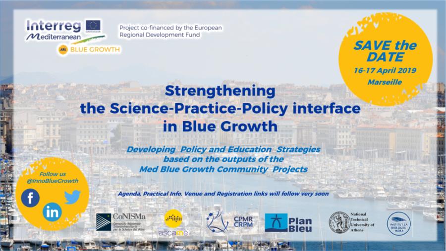 blue growth capitalization
