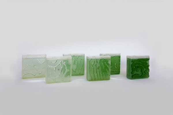 TheCoral shades Products made from Algae