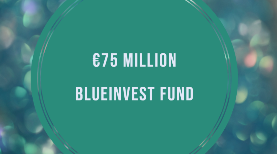 BlueInvest Fund