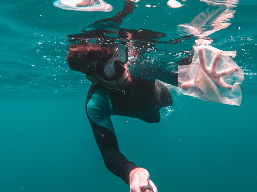 Clean the plastic in the ocean