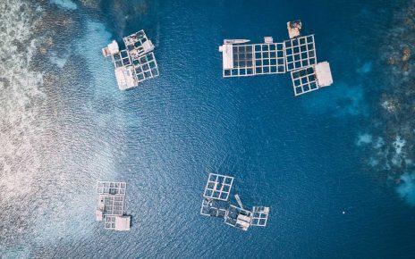 UNITEDs-ocean-multi-use-solutions