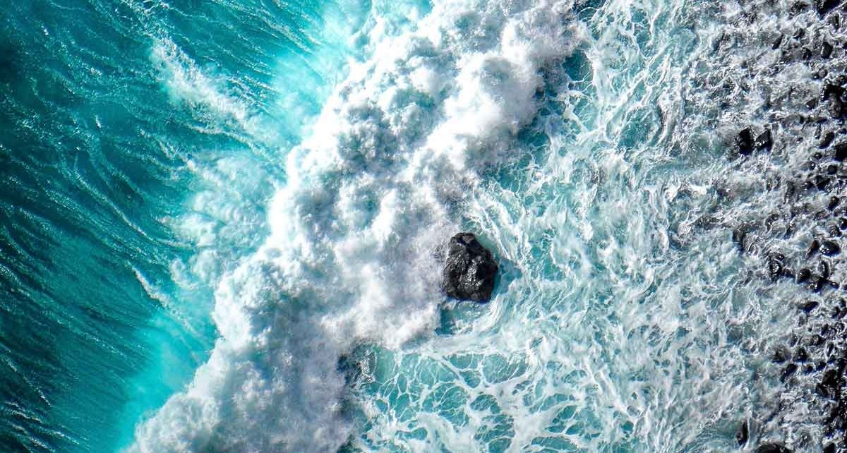 ocean waves Blue Bio Value business accelerator program