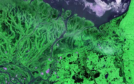ecological-engineering river meets the sea